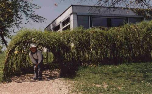 Kindergarten Weideniglu Weidentunnel Weidensepp