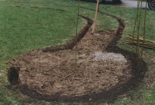 Bauanleitung Weideniglu Weidensepp